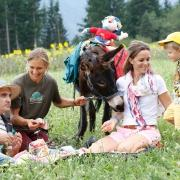 Animal licence and trekking at Ramsi's animal world are waiting for you!