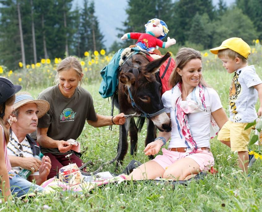 Tierische Urlaubserlebnisse auf dem Ramsi-Bauernhof Esel- und Ponyreiten, Tiertrekking und Tiereführerschein