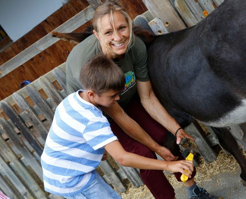Tierische Urlaubserlebnisse auf dem Ramsi-Bauernhof: Esel- und Ponyreiten, Tiertrekking und Tiereführerschein