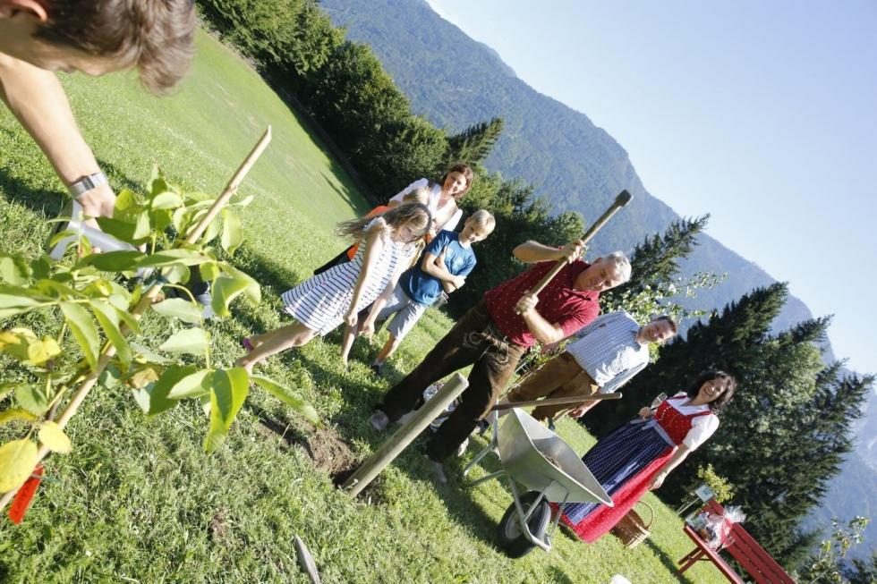 Familien-Stammgast-Baum im Kinderhotel Ramsi