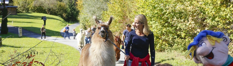 Lamatrekking auf dem Nassfeld: Wie der Wichtel Ramsi Freundschaft mit den Lamas schloss
