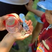 """On the trail of nature: we discover the forest habitat during Ramsis expedition """"Forest Experience"""""""