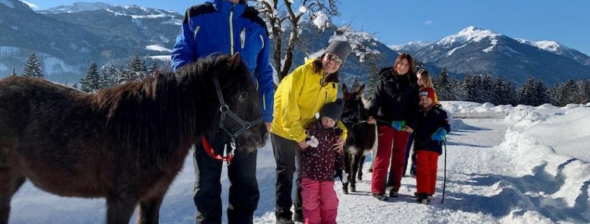 Zauberhafte Tiererlebnisse im Winter 2021
